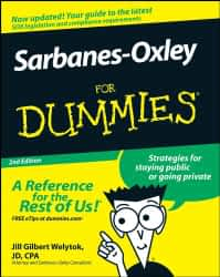 Dummies Guide to SOX