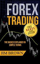 Forex trading the basics explained
